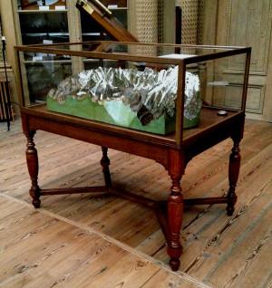 Tafelvitrine voor Teylers Museum Haarlem