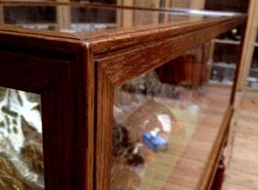 vitrine-teylers-museum-4